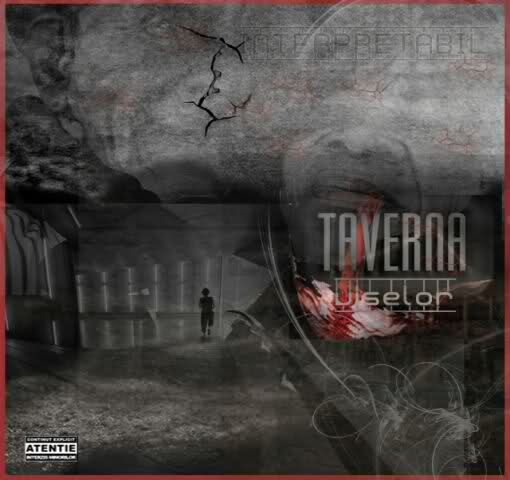 Interpretabil - Taverna Viselor 2008 [Full Album]