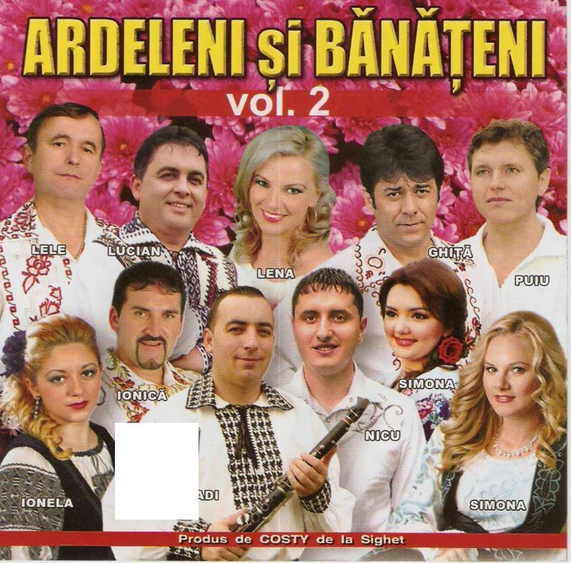 V.A - Ardeleni si Banateni vol.2 2011 (CD ORIGINAL)
