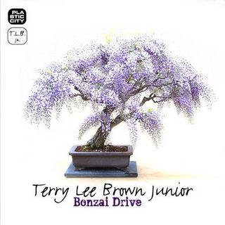 Terry Lee Brown Junior - Bonzai Drive