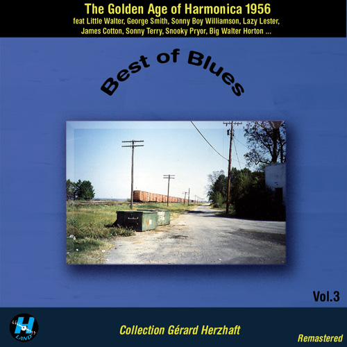 Best Of Blues ( 2 CD Set )
