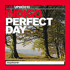 indigo - perfect day (remixes)