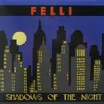 felli - Shadows Of The Night 12