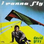 David Gray - I Wanna Fly 12 Maxi [Rare]