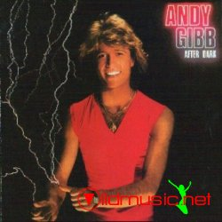 Andy Gibb - After Dark 1980