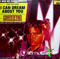 DAN HARTMAN - I Can Dream About You (12