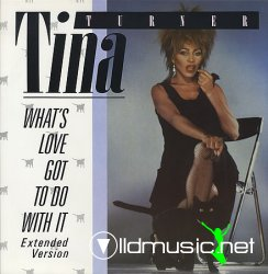 TINA TURNER - What's Love Got To Do With It (12