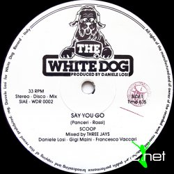 Scoop - Say You Go 12 Vinyl 1983