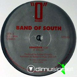 BAND OF SOUTH - SENSITIVE (Vocal 1989)