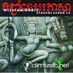 William Orbit - Strange Cargo