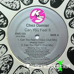 Chez Damier - Can You Feel It