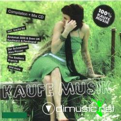 VA - 1 Year Of Kaufe Musik (2008)