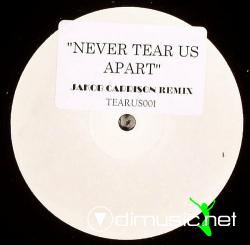 "INXS - Never Tear Us Apart (Jakob Carrison Remix) (TEARUS001) (2007) 12"" Maxi"
