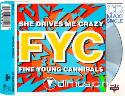 Fine Young Cannibals - You Drive Me Crazy -CD Maxi -1988