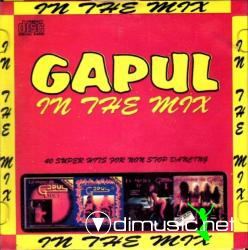 GAPUL - In the Mix