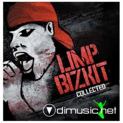 Limp Bizkit - Collected (2008)