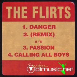 The Flirts - DangerDanger (Remix)PassionCalling All Boys (Vinyl, 12) 1991
