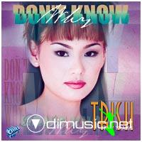 Trish Thuy Trang - Don't Know Way
