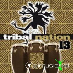 V.A. Tribal Nation Volume 13 (2008)