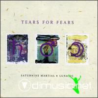 TEARS FOR FEARS-saturnine martial & lunatic