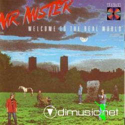 Mr. Mister - Welcome to the Real World (1985)