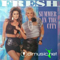 Fresh - Summer In The City (12'') (Vinyl) (1987)