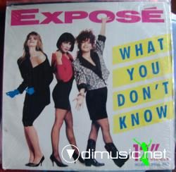 Exposé - What You Don't Know - Vinly 12'' - 1989