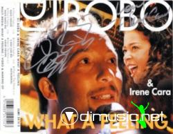 DJ BOBO FEAT. IRENE CARA - WHAT A FEELING (320 KBPS)