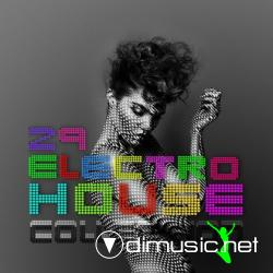 Cover Album of Electro House Collection 2009 TOP 100