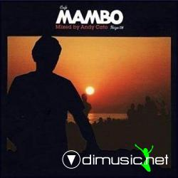 VA - Cafe Mambo Ibiza 08 (by Andy Cato) 2CD (2008)