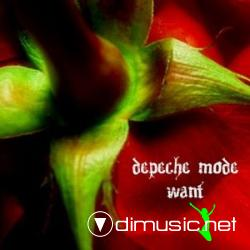 Depeche Mode - Want (2009)