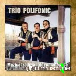 TRIO POLIFONIC - Muzica traditionala romaneasca [Album full 2002]