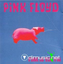 PINK FLOYD, PINK IS THE PIG
