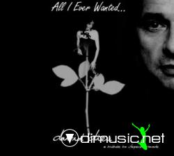 Depeche Mode - All I Ever Wanted (David Dieu Tribute Remixs Vol.1) [2009]