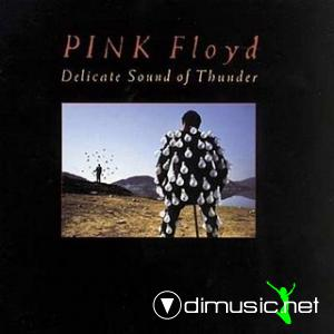 Pink Floyd - Delicate Sound Of Thunder (1988)