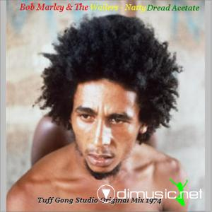 Bob Marley & The Wailers Natty Dread Acetate - Tuff Gong Studio Original Mix 1974