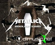 Metallica -  Broken Beat And Scarred (Disc 2) 2009