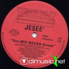 Jesee - You Will Never Know [12'' Vinyl Wise Guy Records]