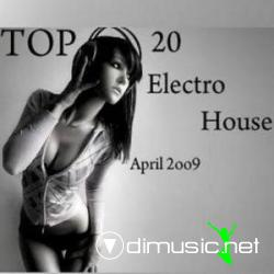 Electro House TOP 20 - April (2009)