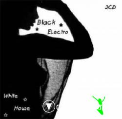 Black Electro & White House (2009)