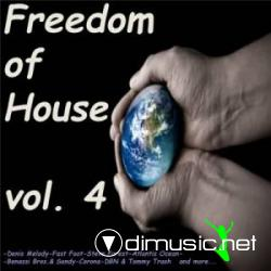 Freedom House vol.4 (2009)