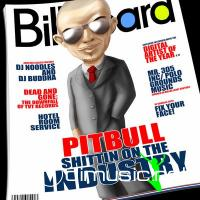 Pitbull - Shittin On The Industry