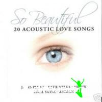VA - So Beautiful - Acoustic Love Songs
