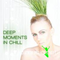VA - Deep Moments in Chill(2009)