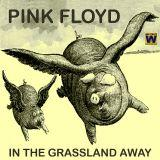 Pink Floyd - In The Grassland Awasy - 1977 live