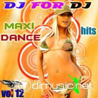 Dj For Dj Maxi Dance Hits Vol 12