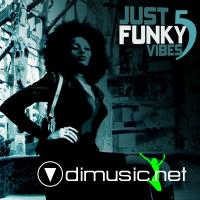JUST FUNKY VIBES 5