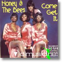 Honey and the Bees - Come Get It - The Complete Josie Recordings 1970-1971 (LP)