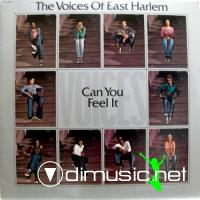 Voices Of East Harlem - Can You Feel It (1974)