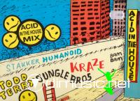Acid In The House Mix Vol. 1