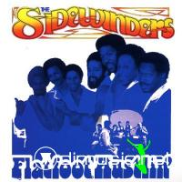The Sidewinders - Flatfoot hustlin' (1977)